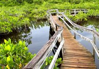 Freeport - Gran Bahama (Bahamas)