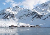 Grytviken (South Georgia)
