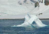Half Moon Island (Antártida)