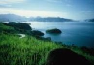 Ilha Grande (Brasil)