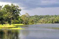 Manaus - Amazonas (Brasil)