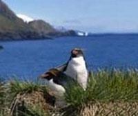 Navegación (Estrecho de Magallanes - Chile/Argentina)