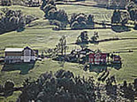 Olden (Noruega)
