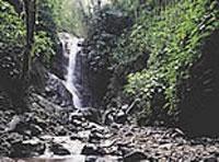 Puerto Limón (Costa Rica)