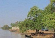 Tendaba (Gambia)